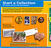 Start a Collection Activity Sheet